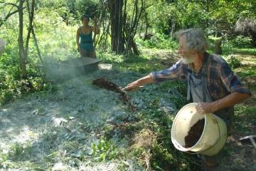 Mischkultur und Kompost-Bau 3
