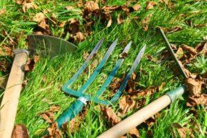Foto von Gartenwerkzeugen in einer Wiese mit Laub liegend. Von links: Gartenhacke, Grabegabel, Rechen.