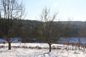 Gemeinschaftsfindung, Winteranfang und andere Baustellen 3