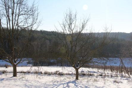 Gemeinschaftsfindung, Winteranfang und andere Baustellen 1