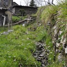 Foto einer Frühlingsszene im Projekt Castagnola in der Toskana