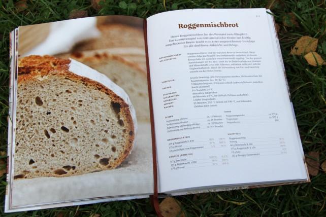 Foto eines Ausschnitts eines Rezepts aus dem Brotbackbuch