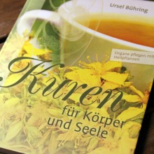 """Foto vom Buchcover """"Kuren für Körper und Seele"""""""