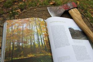 Foto vom Inhalt des Buches - Buch liegt mit einer Axt auf einem Holzpflock