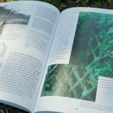 Foto von lebenden Flechtwänden aus einem Buch