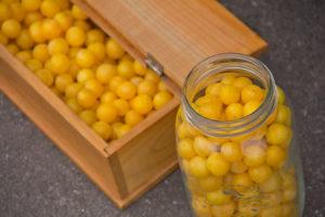 Fotos von gesammelten Kirschpflaumen in einer Holzbox und einem Glas.