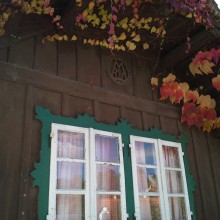 Foto von Holzhaus Fenster mit wildem Wein im roten Herbstlaub