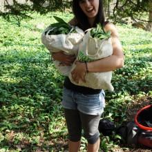 Foto von Lisa mit zwei Säcken voll Bärlauch