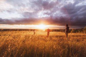 Foto von Menschen auf einem Feld im Sonnenuntergang