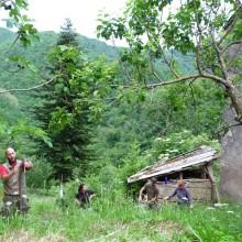 Foto von mehreren Menschen beim Arbeiten auf einer Wiese