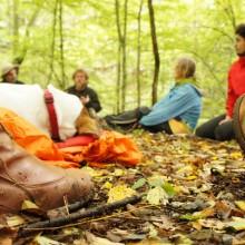 Menschen sitzen im Kreis am Waldboden.