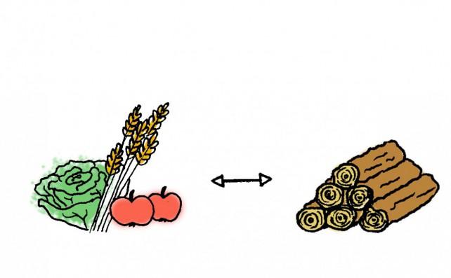Ein Salatkopf, Getreide und zwei Äpfel die gegen Holzscheite ausgetauscht werden