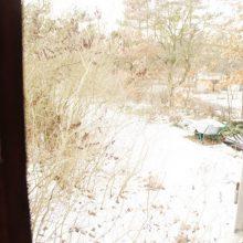 Blick aus dem Fenster des Bauwagens in eine winterliche Landschaft.