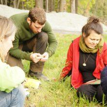Menschen im Gras sitzend, betrachten Pflanzen