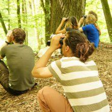 Menschen beobachten Vögel mit Ferngläsern