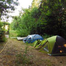 Foto von Zelten am Sommercamp 2016 beim Experiment Selbstversorgung