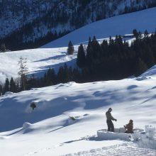 Schneelandschaft mit 2 Personen die ein Iglu bauen