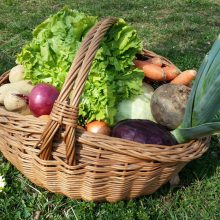 Foto eines Korbes voller Gemüse