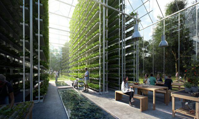 Design Entwurf einer Innenansicht mit vertikalen Pflanzenbeeten.