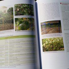 Foto einer Doppelseite des aufgeschlagenen Buches Basiswissen Selbstversorgung aus Biogärten von Andrea Heistinger, Nummer 2