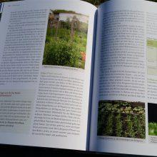 Foto einer Doppelseite des aufgeschlagenen Buches Basiswissen Selbstversorgung aus Biogärten von Andrea Heistinger, Nummer 6