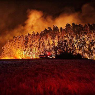 So könnte die Klimakatastrophe aussehen