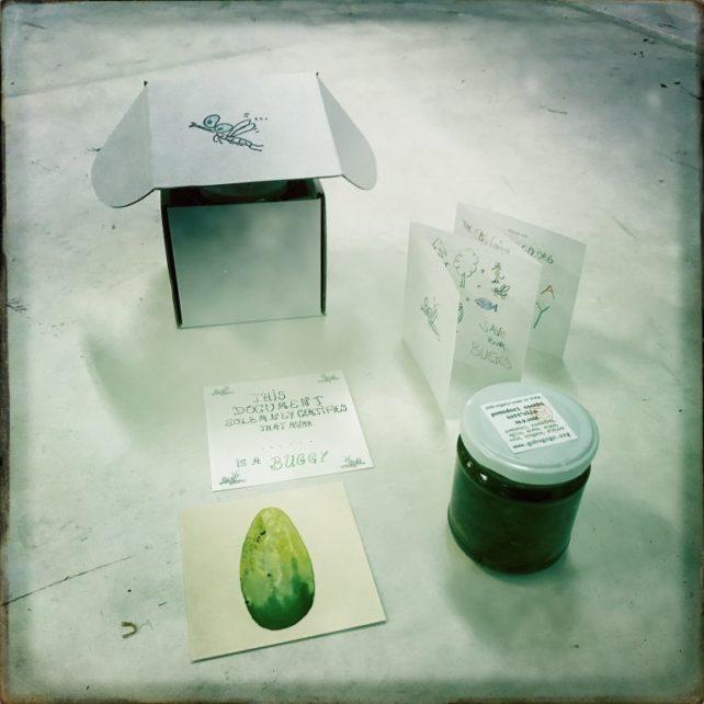 Foto des Go Bugs Go Incentives (BioKonserve, Zeichnung, Zertifikat, Folder)
