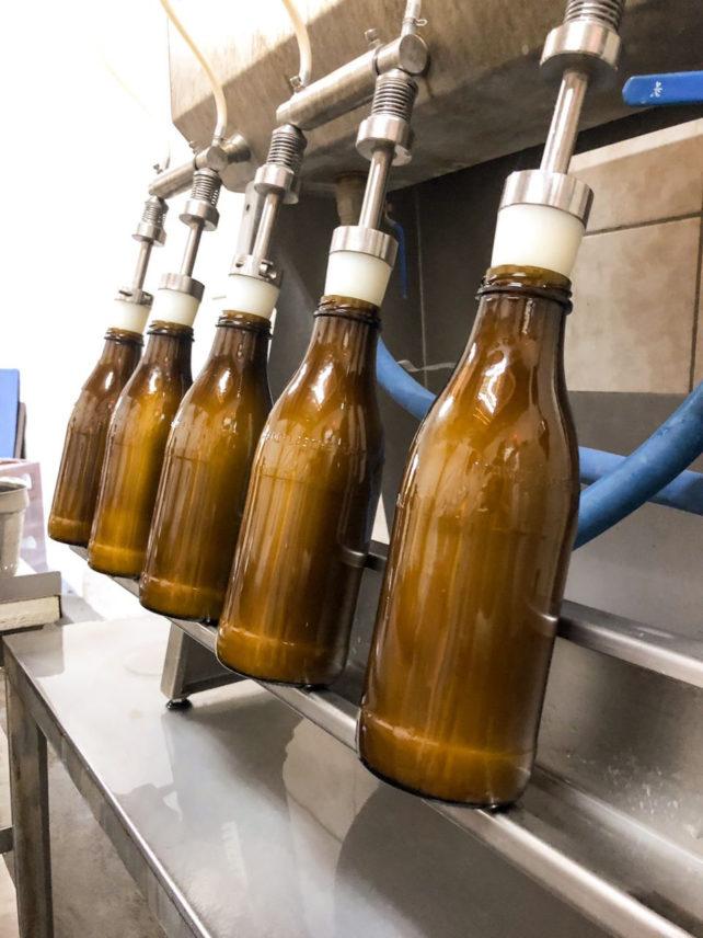 Genossenschaftliche, verpackungsfreie Bio-Hafermilch & mehr 4