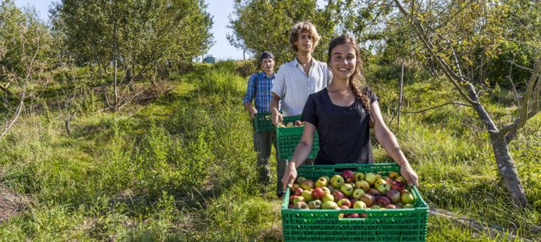 Landwirtschaft neu gedacht