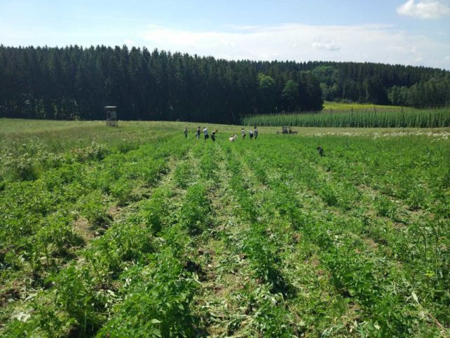 Landwirtschaft neu gedacht 5